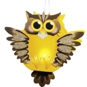 Children's Lantern Kit-Owl